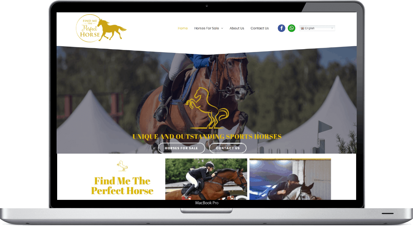 Web Design - Find Me The Perfect Horse